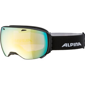 Alpina Big Horn QVMM Lunettes de protection, black matt gold spherical
